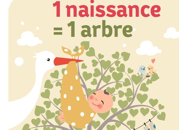 1 naissance = 1 arbre… un arbre sera planté à la naissance de votre bébé !